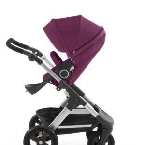 Trailz in Purple stroller