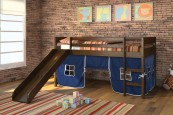 Tiona Twin Loft Bed with Slide